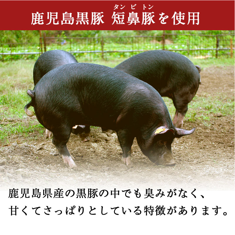 鹿児島黒豚短鼻豚を使用